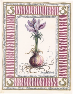 Herb 2 rectangle
