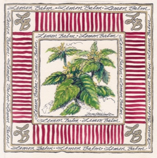 Herb 2 square